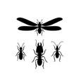 termites queen soldier worker vector image vector image