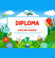 education diploma kindergarten certificate insects vector image vector image
