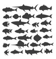 fishes silhouettes set vector image vector image