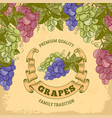 grapes label vector image