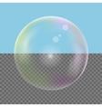 Realistic Soap bubble vector image vector image
