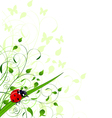 Spring background with ladybug vector image vector image