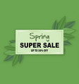 spring sale banner with leafs vector image vector image