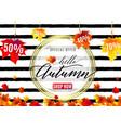 fashion autumn sale poster vector image