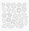 autumn leaves banner template vector image