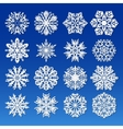 Big Snowflakes set for winter and christmas theme vector image