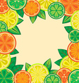 Decorative frame of oranges lemons and limes vector image