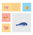 flat icon sea set of cancer sea star algae and vector image vector image