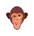 monkey winking emoji marmoset merry emotion vector image