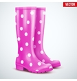Pair of violet rain boots vector image vector image
