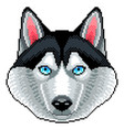 pixel husky dog face isolated vector image