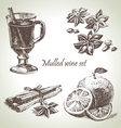 Set of mulled wine fruit and spices hand drawn il vector | Price: 1 Credit (USD $1)