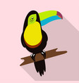 Tropical bird tukan vector image