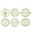 gmo free sign vector image