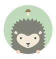 animal set portrait in flat graphics - hedgehog