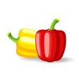 bright red and yellow bell peppers icon isolated vector image