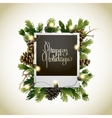Christmas card with coniferous design vector image vector image