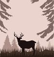 deer in the woods vector image vector image