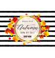 fashion hello autumn sale vector image vector image