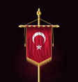 flag of turkey festive vertical banner wall vector image vector image