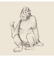 monkey sketch engraving vector image