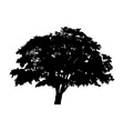 silhouette detached tree with leaves on a white vector image