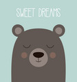sweet dreams card with bear vector image vector image