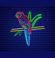 parrot neon glowing shiny colorful bird decor vector image vector image