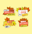 promotional label with maple leaves oak foliage vector image vector image