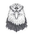 sea eagle head with pagan runic symbols vector image vector image