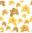 set yellow orchid phalaenopsis floral seamless vector image vector image