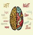 brain dve hemisfere right left2 resize vector image vector image