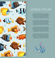 cartoon bright aquarium fish banner design vector image