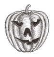 halloween pumpkin hand drawing sketch vector image vector image