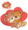 a couple brown teddy vector image vector image