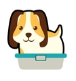 cute puppy little pet domestic bathtub vector image vector image