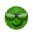 green grass field 3d face wink smile vector image