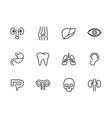 human body internal organs icon simple symbols set vector image