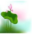 Pink Lotus Flower vector image vector image
