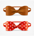 realistic 3d bow tie set vector image
