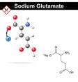 Sodium glutamate vector image vector image