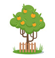 tree with yellow apple picking flat vector image vector image