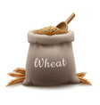 realistic sack of wheat grain vector image