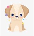 cute little dog domestic cartoon animal pets vector image vector image