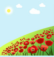 green field with red poppies under hot summer sun vector image