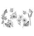 hand drawn monochrome wildflowers and vector image vector image