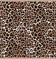 leopard or jaguar seamless pattern modern animal vector image vector image