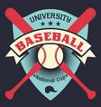 baseball vintage poster with shield stars vector image vector image
