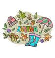 beautiful autumn composition vector image vector image