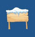 cartoon wooden winter sign with snow cap vector image